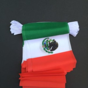 COUNTRY BUNTING.MEXICO
