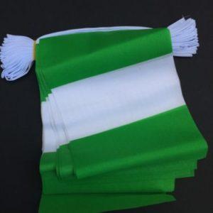 COUNTRY BUNTING.NIGERA