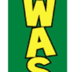 carwash green